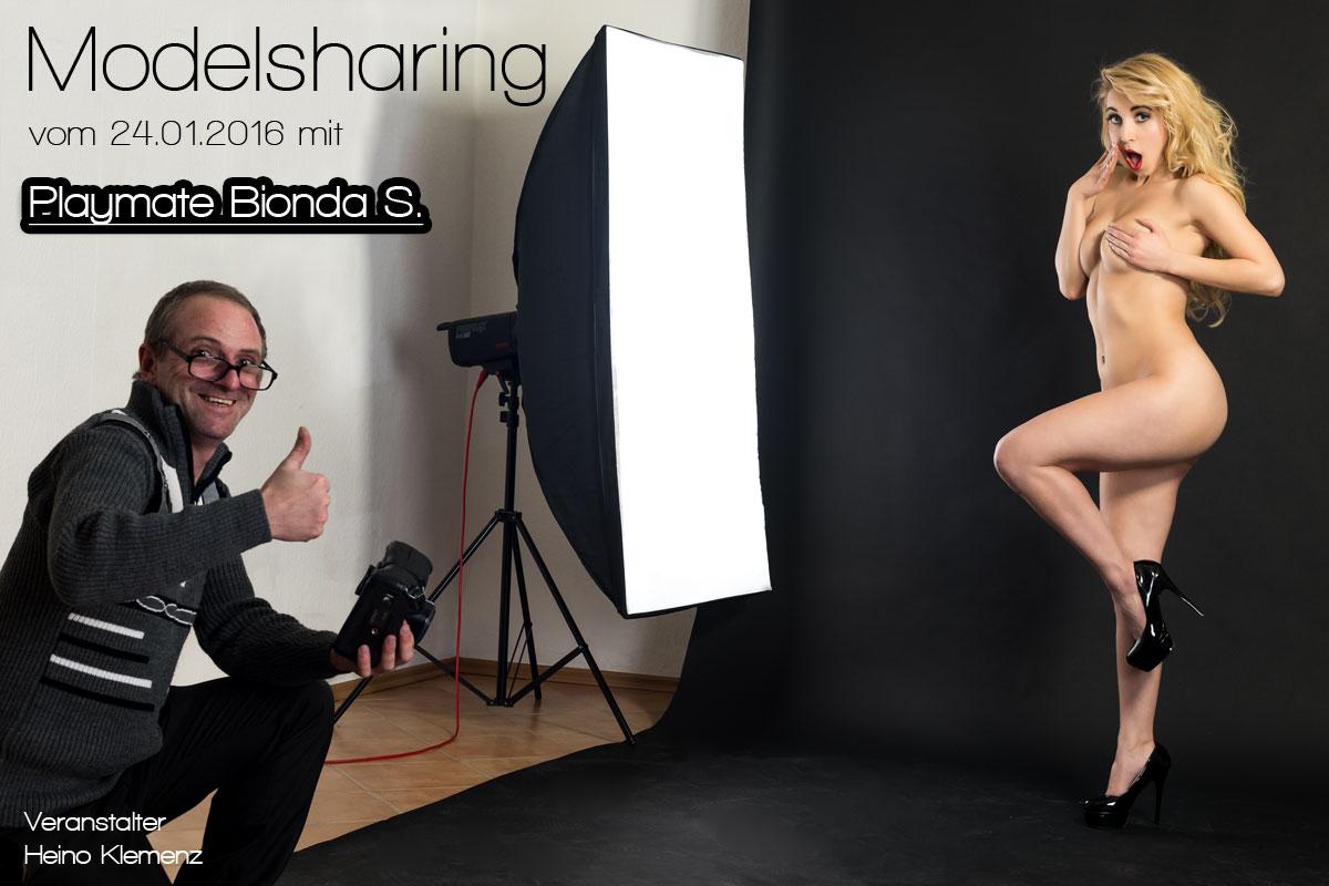 Modelsharing